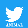 https://twitter.com/animal_land9